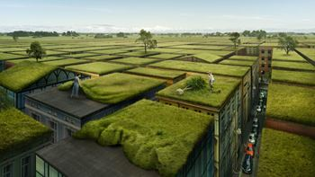 Everyday_Problemsolver_GreenRoof_Final